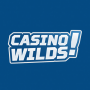 Casinowilds Site